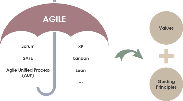 Agile and guiding principle